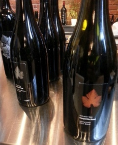 Kangarilla Road Alluvial Fans and Devils Whiskers Shiraz at Icon